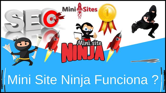 Mini Site Ninja Funciona