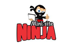 mini site arrasadores